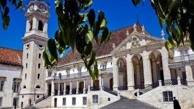 Associação Internacional dos Lusodescendentes quer lusodescendentes a estudar em Portugal