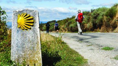 Portugal Green Walks-temacapa-mileniostadium