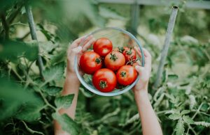 Estes alimentos fazem bem ao cérebro-saudebemestar-mileniostadium