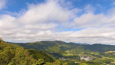 Tribunal volta a ordenar libertação de passageiros em quarentena-Milenio Stadium-Açores