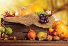 Sabores de outono-mundo-mileniostadium