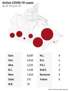 What's happening in Canada-canada-mileniostadium
