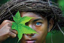 Azul Elétrico-indonesia-mileniostadium