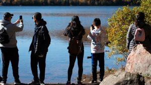 What's happening in Canada and around the world-world-mileniostadium