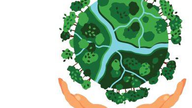 Meio-ambiente-mundo-mileniosadium