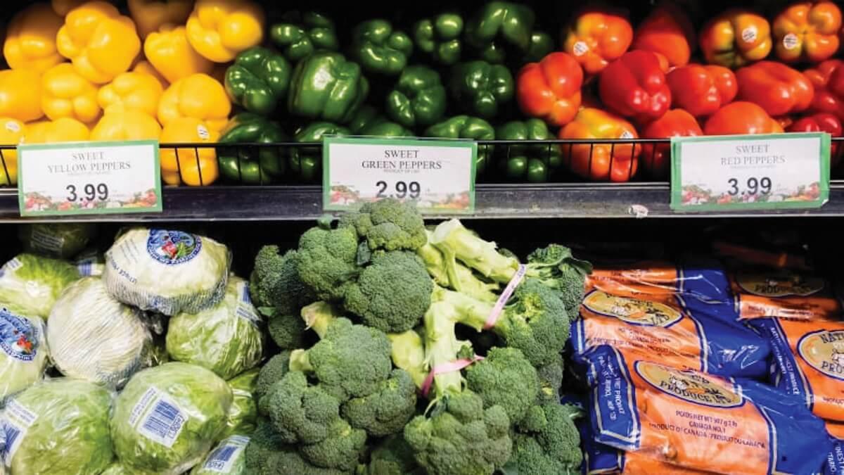 Milenio Stadium - toronto - canada grocery-store-produce