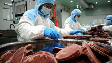 China volta a detetar covid-19-china-mileniostadium
