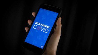 "Stayaway covid"" gerou mais de 14 mil-portugal-mileniostadium"