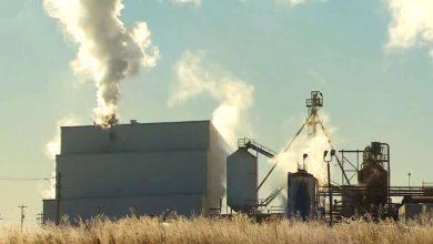 New COVID-19 outbreak declared at Cargill meat plant in Alberta — site of Canada's largest outbreak-Milenio Stadium-Canada