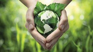 Educação  para a  ecologia-mundo-mileniostadium
