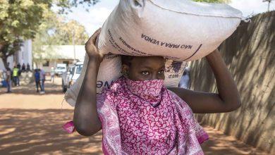 Ajuda alimentar vai chegar a mais de 500 mil-africa-mileniostadium