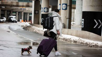More than 200 travellers fined for refusing to quarantine in hotels after landing in Canada-Milenio Stadium-Canada