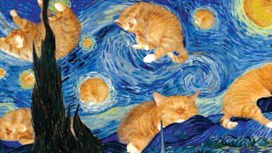 Fat Cat Art-mileniostadium-entertainment