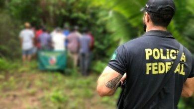 Polícia resgata 12 pessoas em situação de trabalho escravo no Brasil