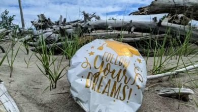 Biologist estimates helium balloons are ending up in Great Lakes by the hundreds of thousands-Milenio Stadium-Canada