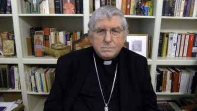 Papal apology for church's role in residential schools may not be way forward-archbichop-Milenio Stadium-Ontario