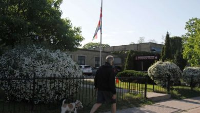Pride flag-Milenio Stadium-Ontario