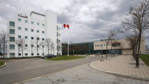 The Winnipeg lab-Milenio Stadium-Canada