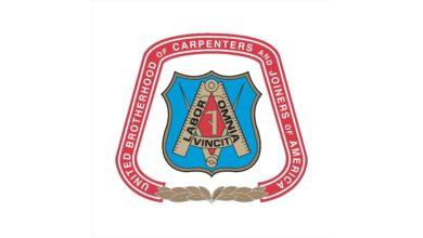 milenio stadium - carpenters