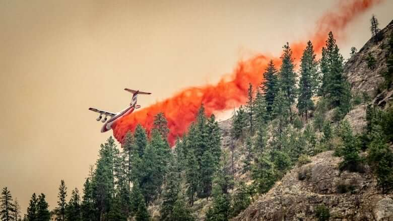 B.C. declares state of emergency as wildfires grow, forcing more evacuations-Milenio Stadium-Canada