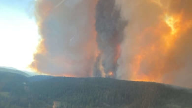 B.C. responds to double the average annual number of wildfires, halfway into fire season-Milenio Stadium-Canada