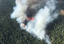 Calls grow for B.C. to declare state of emergency over wildfires, but province is standing firm-Milenio Stadium-Canada