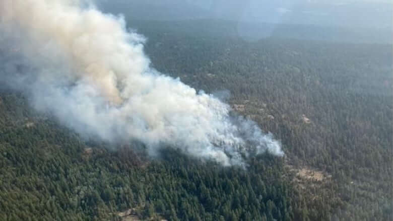 Evacuation orders issued, another lifted as wildfires challenge fire crews across B.C.-Milenio Stadium-Canada