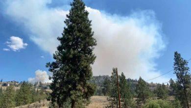 Evacuations continue in B.C.'s Okanagan as fires burn across province-Milenio Stadium-Canada