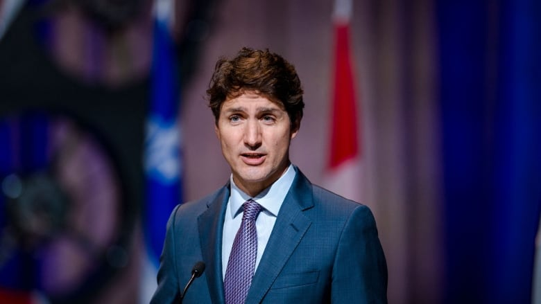 Fully vaccinated Americans could be allowed into Canada by mid-August, Trudeau says-Milenio Stadium-Canada