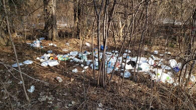 Ontario parks have seen a spike in garbage. A new campaign is trying to change that-Milenio Stadium-Ontario