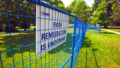 Security fence in Trinity Bellwoods to stay for weeks so grass can grow back, city says-Milenio Stadium-Ontario