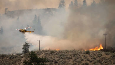 Strong gusts forecast in B.C. and wind set to change direction, creating new challenges for wildfire crews-Milenio Stadium-Canada