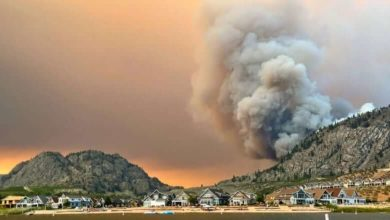 Wildfire between Oliver and Osoyoos grows, evacuation orders issued for hundreds of properties-Milenio Stadium-Canada