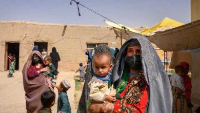 ONG apela a asilo político em Portugal para mulheres e crianças afegãs - milenio stadium - portugal