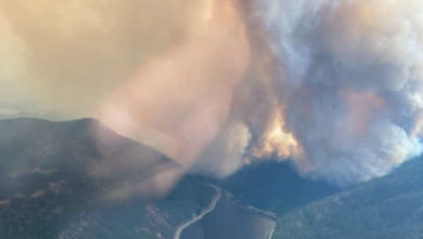 Wildfire tears through B.C. community, destroying homes and forcing hundreds of evacuations-Milenio Stadium-Canada