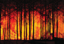 Alerta Vermelho-ambiente-mileniostadium