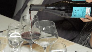 Prova de vinhos portugueses conquistou-toronto-mileniostadium