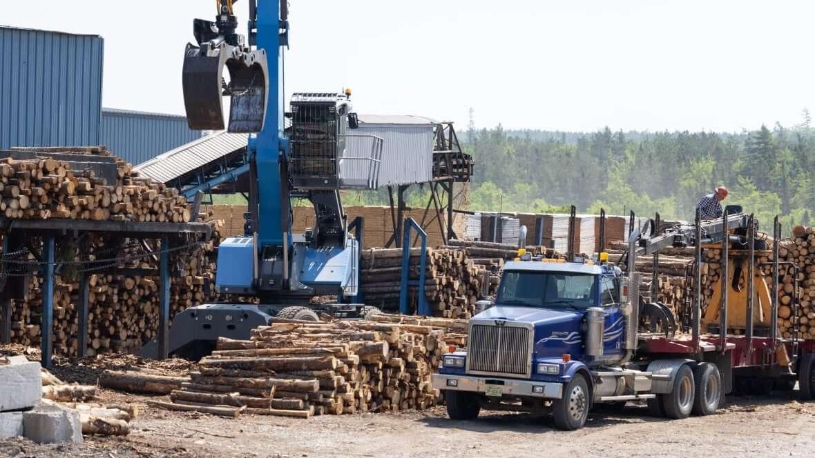 Lumber-Milenio Stadium-Canada