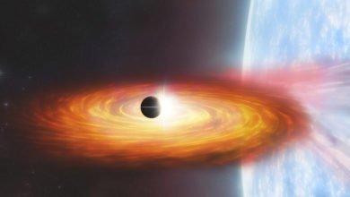 Encontrados sinais do primeiro planeta fora da nossa galáxia - milenio stadium - mundo