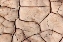 Novos Desertos-ambiente-mileniostadium